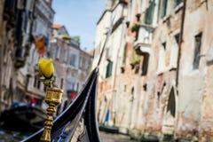Rose on a gondola Stock Images