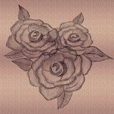 Rose a gravé en refief sur le fond texturisé Art tiré par la main de crayon images stock