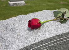 Rose on a Grave. A single rose placed on a grave Royalty Free Stock Image