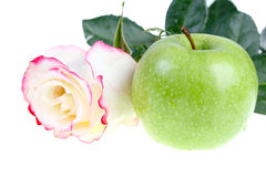 Rose and green apple Stock Photography