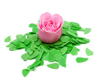 Rose with green leaves Stock Photos