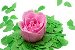 Rose with green leaves Royalty Free Stock Images