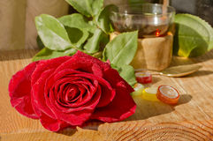 Rose, green leaves ,tea Cup,lollipops. Royalty Free Stock Image