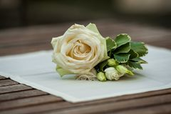 Rose and green leaves on white napkin on wood table stock image