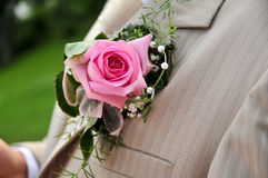 Rose on groom Royalty Free Stock Photos