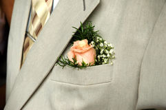 Rose on groom Royalty Free Stock Photo
