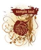 Rose Grunge Design Royalty Free Stock Images