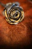 Rose. Grunge image. stock photo