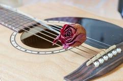 Rose and a guitar