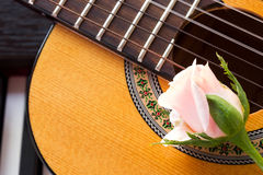 Rose on guitar with piano key. Stock Image