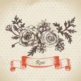 Rose. Hand drawn vintage design Stock Photo