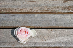 Rose Head. Head of a rose on wooden plank Stock Photo