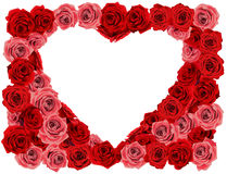 Rose heart. Formed by many roses Stock Photography