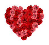 Rose heart. Formed by many roses Royalty Free Stock Photo