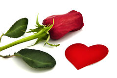 Rose and heart. stock images