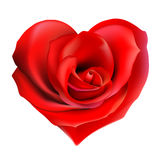 Rose_heart Stock Photo
