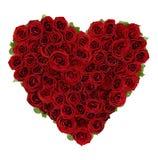 Rose Heart Imágenes de archivo libres de regalías