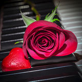 Rose Heart Fotografie Stock Libere da Diritti