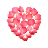 Rose Heart Stock Photo