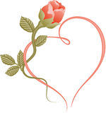Rose heart frame. Scalable vectorial image representing a rose heart frame, isolated on white Royalty Free Stock Image