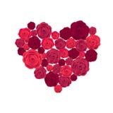 Rose Heart Isolated no fundo branco Foto de Stock