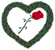 Rose Heart Rose bushes illustration. A single red rose with stem and leaves is surrounded by white and then lots of small roses with rose leaves of rose bushes Royalty Free Illustration