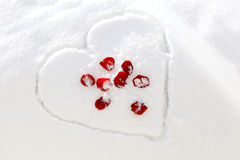 Rose Heart Snow Stock Photography