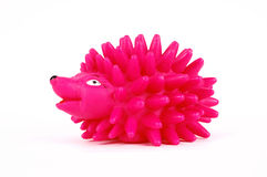 Rose hedgehog toy Stock Image
