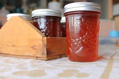 Rose hib crab apple jelly jar. Fruit canning is in the kitchen ready to go to the pantry stock image