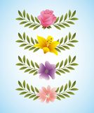 Rose hibiscus periwinkle delicate flowers and branch leaves decoration. Vector illustration Royalty Free Stock Photos
