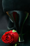 Rose with high heel shoe. Red rose with black high heel shoe Stock Images