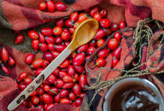 Rose-hip berries and spoon with jam on fabric Royalty Free Stock Image