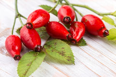 Rose Hip. Detail Rose Hip  on the old wooden table Royalty Free Stock Photos