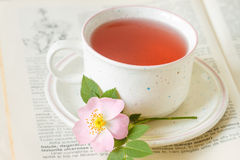 Rose hip flower tea Royalty Free Stock Image