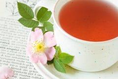 Rose hip flower tea Stock Image