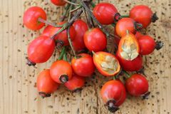 Rose hip flowers cut in half Royalty Free Stock Image
