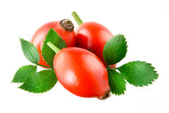 Rose hip isolated on white Stock Image