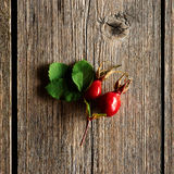 Rose hip over old wooden background Stock Images