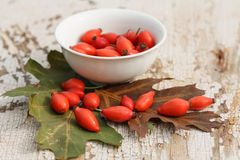 Rose hip. Red rose hips and bowl with oak leaves on grunge wooden table Stock Photography
