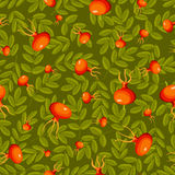 Rose hip seamless green pattern. Royalty Free Stock Images