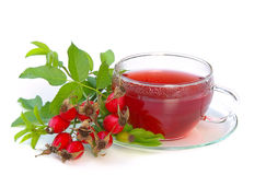 Rose hip tea 02 Stock Image