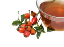 Rose hip tea Royalty Free Stock Photo