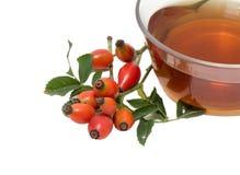 Rose hip tea Royalty Free Stock Photo