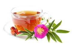 Rose hip tea. Cup of rose hip tea on a white background Royalty Free Stock Image