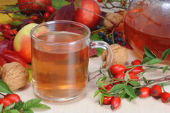 Rose hip tea. A cup of rose hip tea with fresh red briars and autumn decoration stock photos