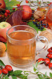 Rose hip tea Stock Photo