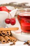 Rose hip tea Royalty Free Stock Photos