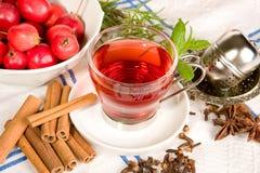 Rose hip tea Royalty Free Stock Photography