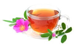 Rose hip tea. Cup of rose hip tea on a white background Stock Photos