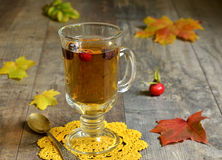 Rose hip tea. Royalty Free Stock Images